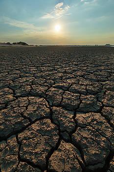 Thirsty ground by Davor Zerjav