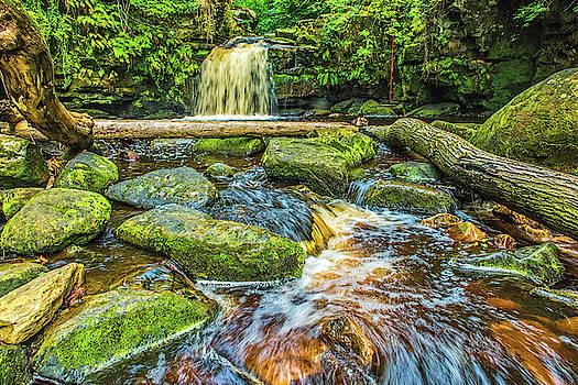 David Ross - Thomason Foss waterfall