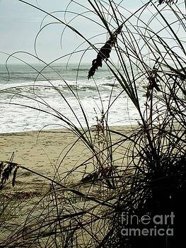 Cindy Treger - Though The Sea Oats