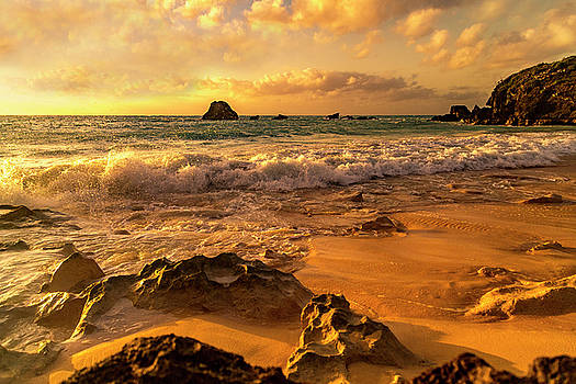Thoughtful Morning Golden Coastal Paradise  by Betsy Knapp