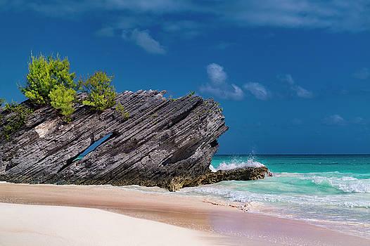Thread the Needle Caribbean Beach by Betsy Knapp
