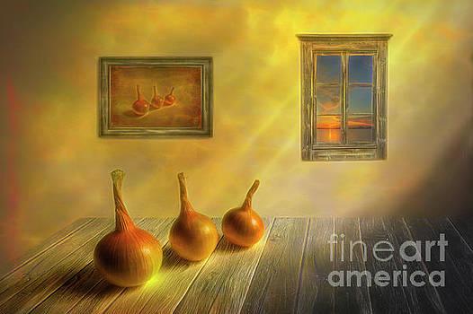 Three onions by Veikko Suikkanen