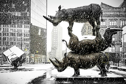 Three Rhinoceri In New York  by Chris Lord