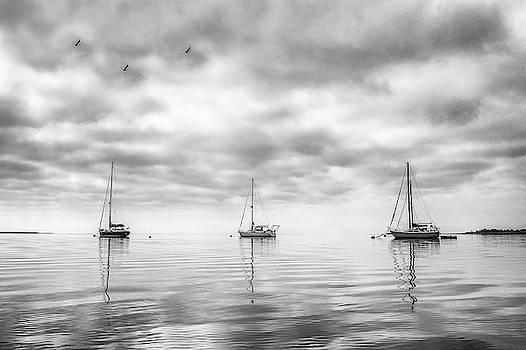 Three Yachts by Stephanie McDowell