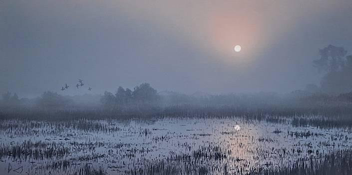 Through the Fog by Peter Mathios