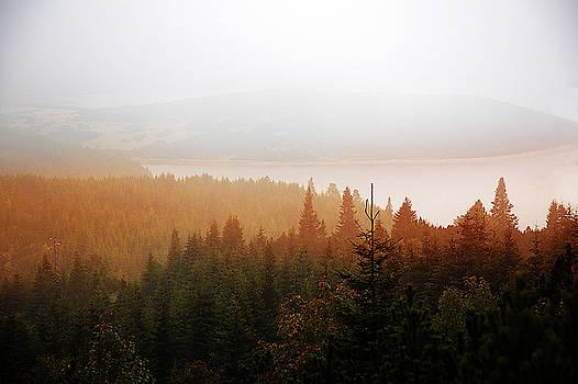 Through the Mist by Milena Ilieva