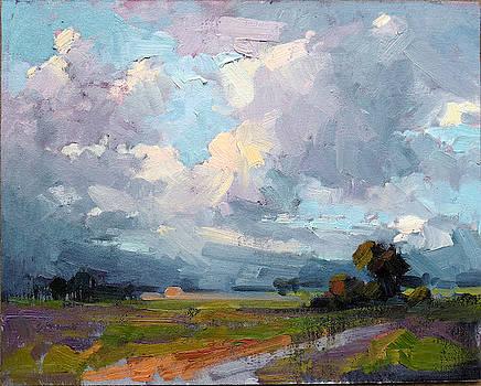 Through the Storm by Steven McDonald