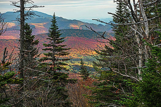 Toby McGuire - Through the Trees as seen from Wright Mountain Adirondack