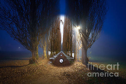 Time Egg by Roberto Agagliate