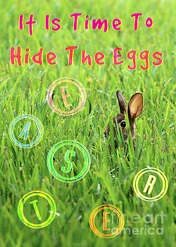 Diann Fisher - Time To Hide The Eggs
