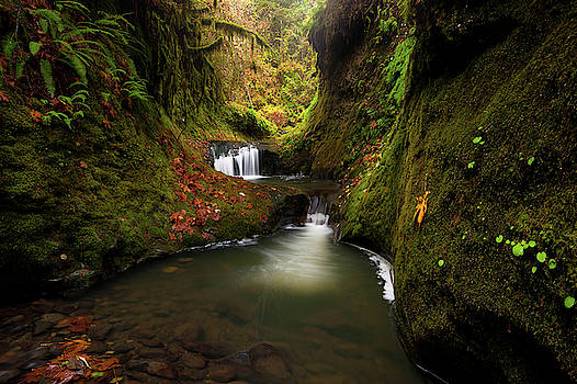 Tire Creek Canyon by Andrew Kumler