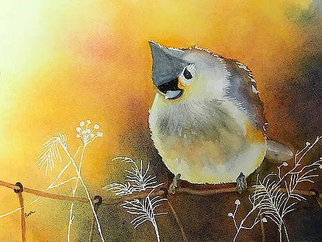 Titmouse by Beth Fontenot