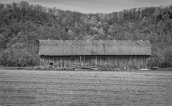 Tobacco Drying Barn 2013 by Thomas Young