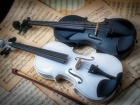 Together Black And White Violins by Garry Gay