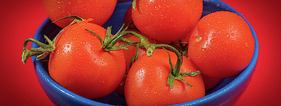Tomatoes On The Vine In Blue Bowl Panorama by Steve Gadomski