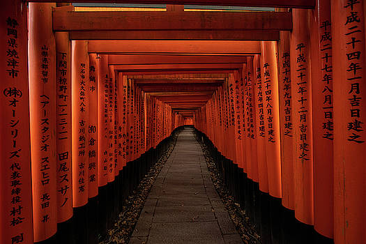 Torii Gates at Fushimi Inari by Nate Richards