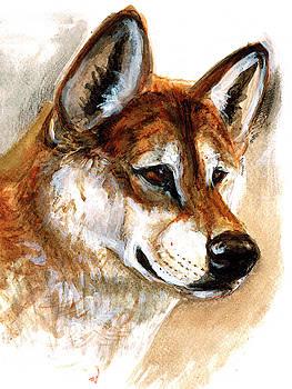 Totem Australian Dingo by Belette Le Pink
