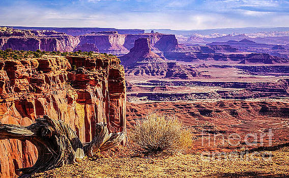Toward the East in Canyonlands by Bob Lentz