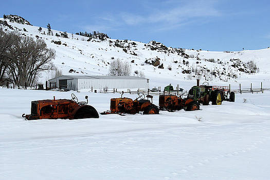 Tractors in Snow by Marie Leslie