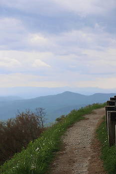 Trail Beside Linn Cove Viaduct 7 by Cathy Lindsey