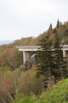 View From Trail Beside Linn Cove Viaduct 5 by Cathy Lindsey