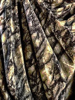Trajan Robe by Joseph Yarbrough