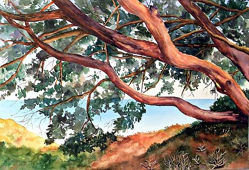 Tree by the Sea by Beth Fontenot