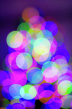 Tree Lights - color by Michael Hills