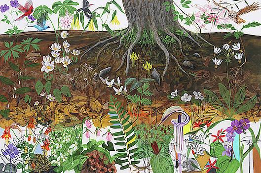 Tree Roots by Trena McNabb