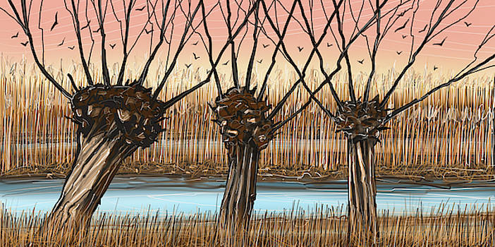 Trees And Reeds by Stuart Roy