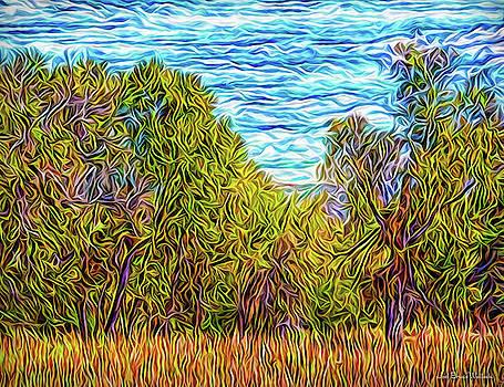 Trees In The Field by Joel Bruce Wallach