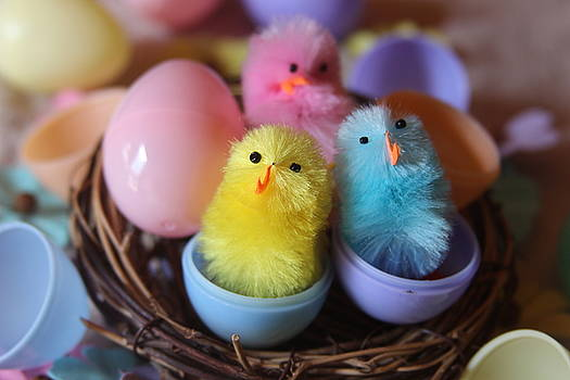 Cathy Lindsey - Trio Of Easter Chicks 3