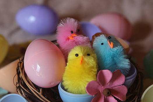 Cathy Lindsey - Trio Of Easter Chicks 6