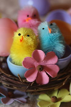 Cathy Lindsey - Trio Of Easter Chicks 8