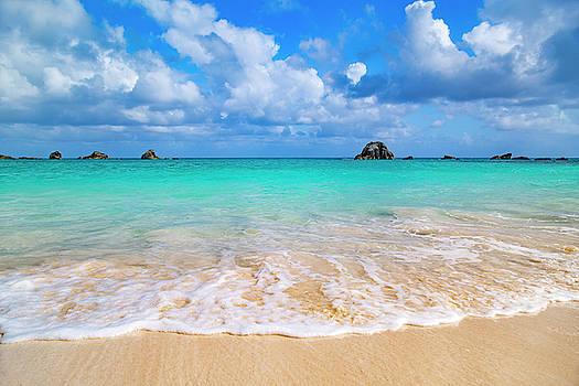 Tropical Paradise Beach Day  by Betsy Knapp