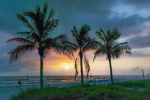 Tropical Sunset by Natalie Simon-Joens