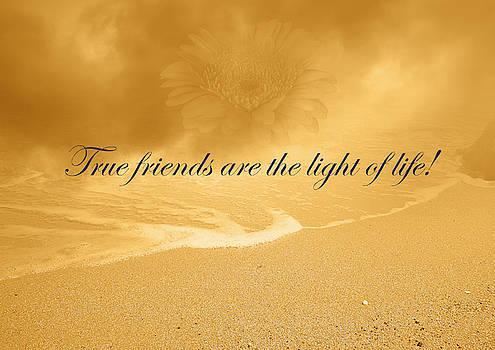True Friends Are The Light Of Life by Johanna Hurmerinta