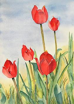Tulips by Beth Fontenot