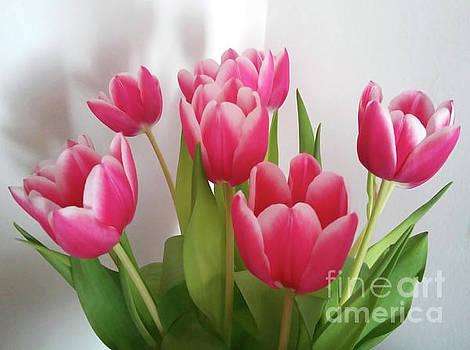 Tulips Bouquet by Jasna Dragun