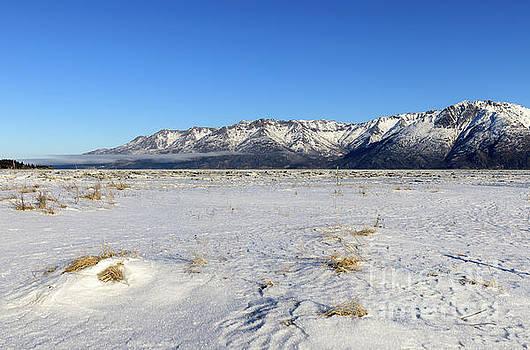 Turnagain Arm and Chugach Range from Hope Alaska by Louise Heusinkveld