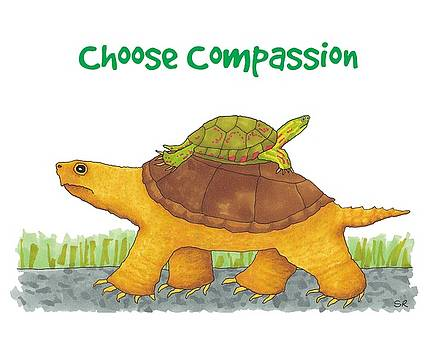 Turtle Compassion by Sarah Rosedahl