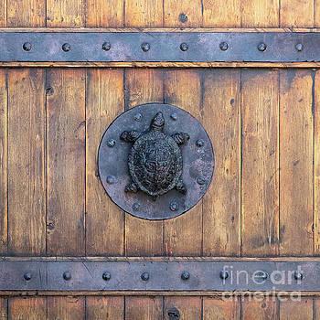 Turtle Door by Nicki Hoffman