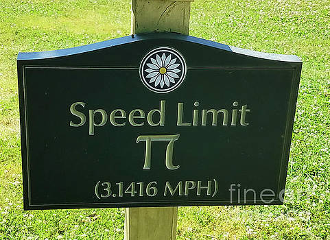 Sharon Williams Eng - Turtle Pace Speed Limit Sign 300