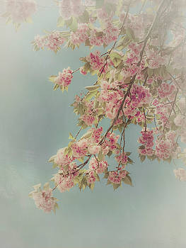 Twig Of Cherry Blossoms by Dirk Wuestenhagen