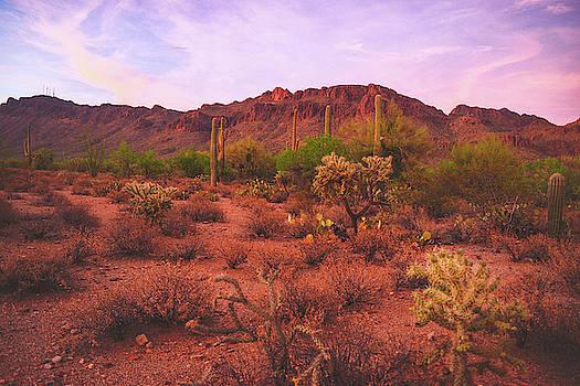 Chance Kafka - Twilight glow on the Tucson Mountains and Sonoran Desert, Arizona