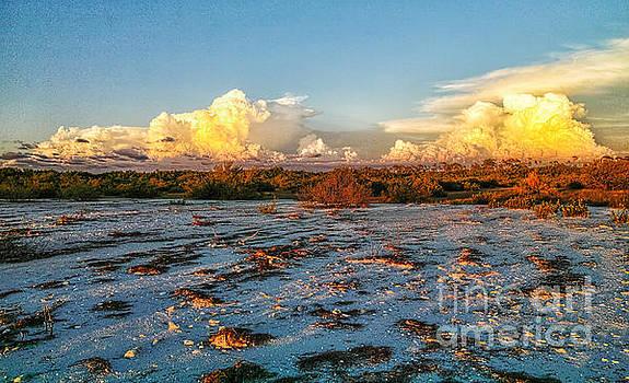 Twilight On The Beach by Felix Lai