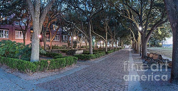 Twilight Panorama of Charleston Waterfront Park Promenade and Shady Canopy of Oaks - South Carolina by Silvio Ligutti