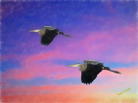 Two Blue Herons in flight. by Rusty R Smith
