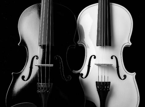 Two Graphic Violins In Black And White by Garry Gay