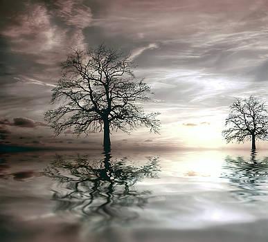Daniel Hagerman - TWO TREE SUNSET